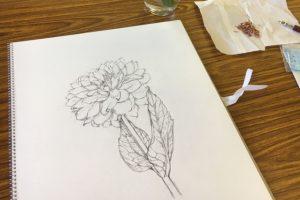 デッサン 鉛筆画