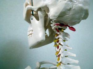 顎関節症 直し方